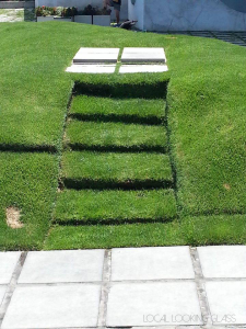 Grass Stairs at Hayden Tract in Culver City
